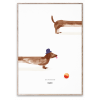 Doug the Dachshund poster without frame from Mado :: Baby Bottega
