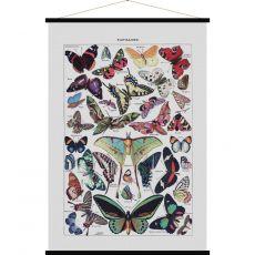 Butterfly, vintage poster art :: Baby Bottega