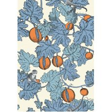 Frutto Proibito, wallpaper  (Orange) :: Cole & Son