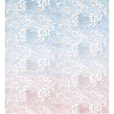 Nuvole al tramonto (crepuscolo) murale:: Cole & Son