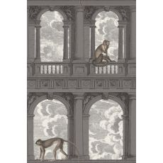 Procuratie con vista, wall mural (gray) :: Cole & Son