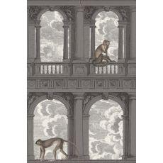 Procuratie con vista, murale (grigio) :: Cole & Son