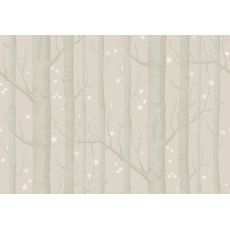 Woods & Stars Wallpaper Beige/White