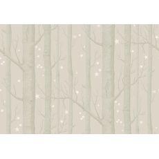 Carta da Parati Woods & Stars Beige/White