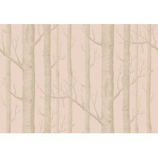 Woods Wallpaper Pink