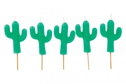 Candeline Compleanno Cactus