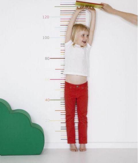 Ruler Wallpaper Tall Wall